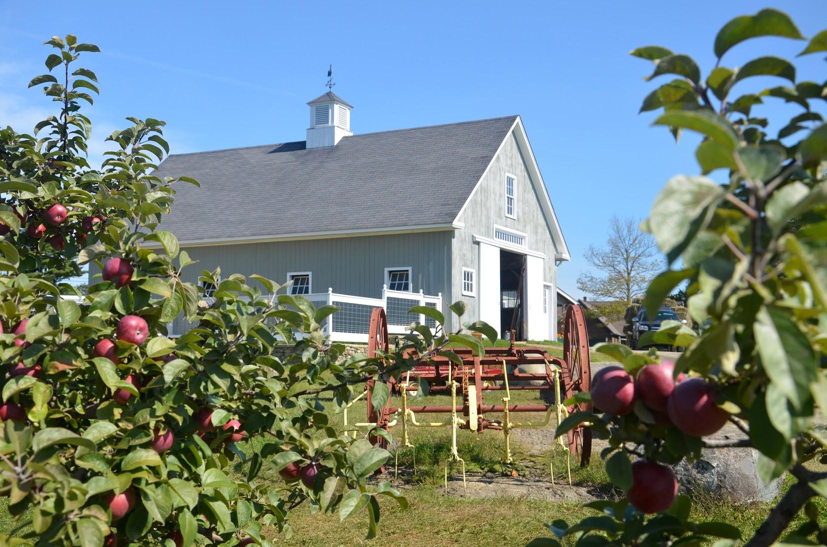 treworgy-orchards
